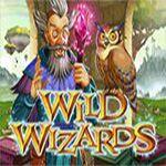 Wild Wizards